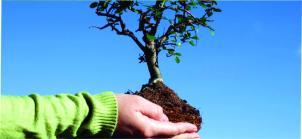 desarrollo-sustentable_1024x4731