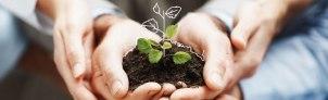 Sustentabilidad (1)